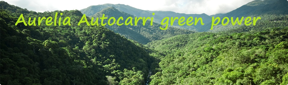Green power Roma Aurelia Autocarri